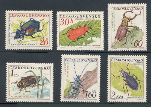 czechoslovakia_07_beetles_1144-9