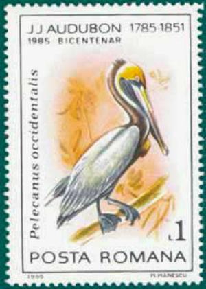 Romania-1985-Audubon-2