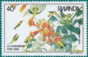 Rwanda-1985-Audubon-3