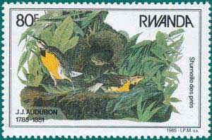 Rwanda-1985-Audubon-4