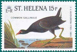 St_Helena-1985-Audubon-2