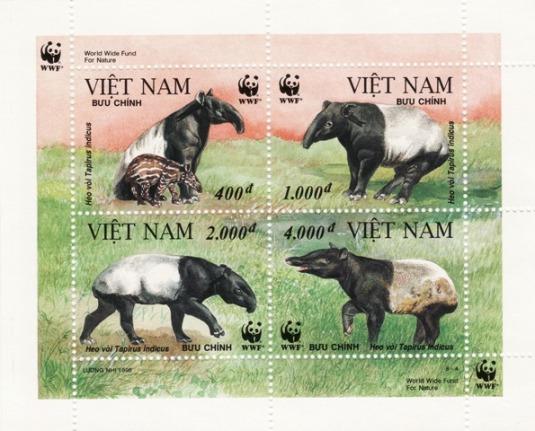 WWF VIETNAM_000214