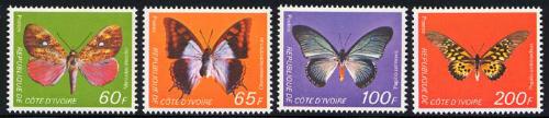 ivory-coast_04_bfly-moth