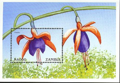 J15-Zambia 41kB