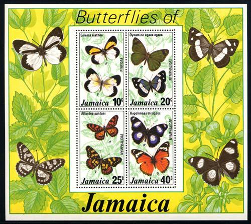 jamaica_09_bflies-ss