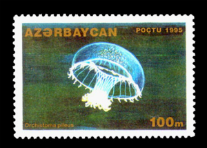 Stamp_of_Azerbaijan_317