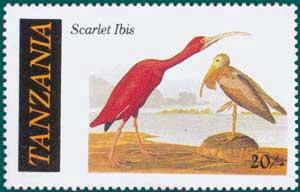 Tanzania-1986-Audubon-3