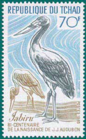 Tchad-1985-Audubon-1
