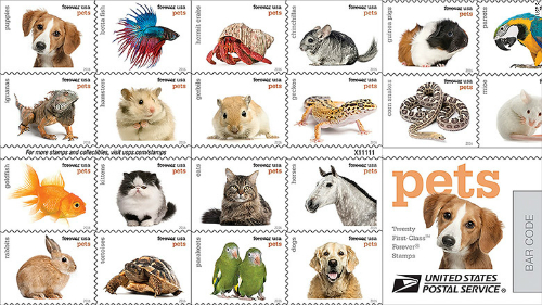 151230170611-stamps-pets-780x439