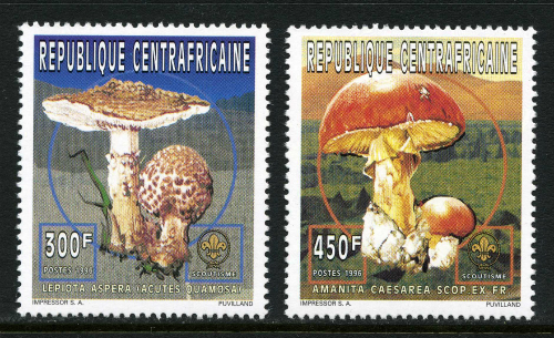Central-African-Republic_1996a
