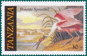 Tanzania-1986-Audubon-4