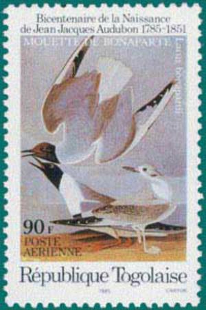 Togo-1985-Audubon-1