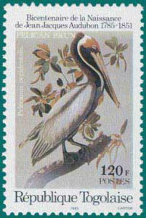 Togo-1985-Audubon-2