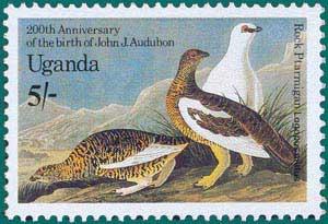 Uganda-1985-Audubon-1