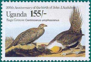 Uganda-1985-Audubon-2