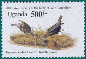 Uganda-1985-Audubon-4