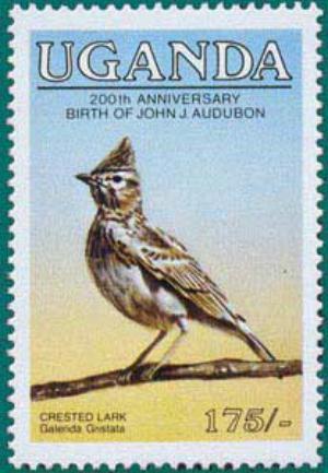 Uganda-1985A-Audubon-3