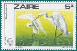 Zaire-1985-Audubon-1