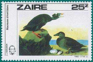 Zaire-1985-Audubon-4