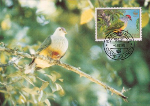 Cook-Islands-Maximum-Card-Birds