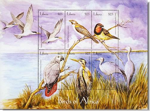 lib0407sh-birds6africa