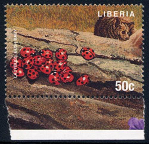 liberia_33_btl
