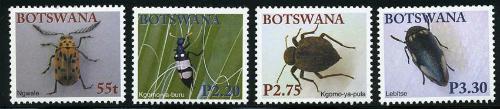 botswana_12_btls