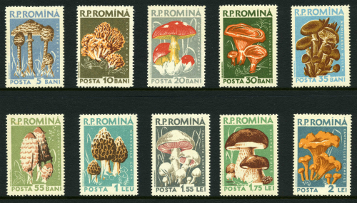 rumania_1958unused