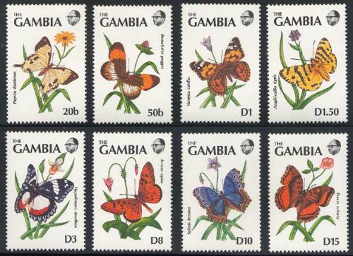 gambia_11_bflies