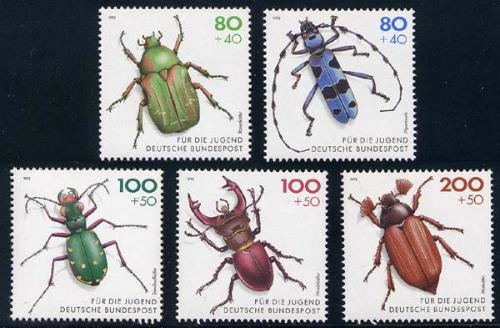 germany_11_beetles