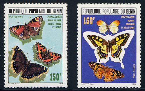 benin_05_butterflies_633-4