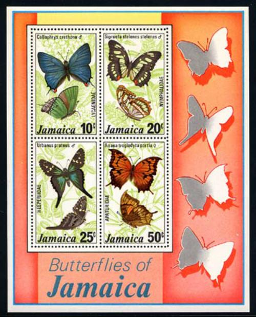 jamaica_10_bflies-ss
