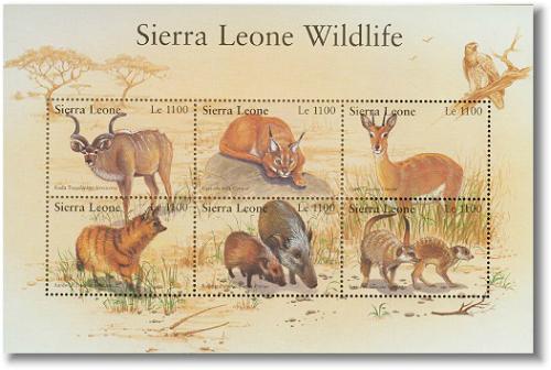 sie0211sh-wildlife6