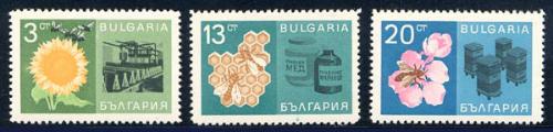 bulgaria_07_bees_1602,1608-9