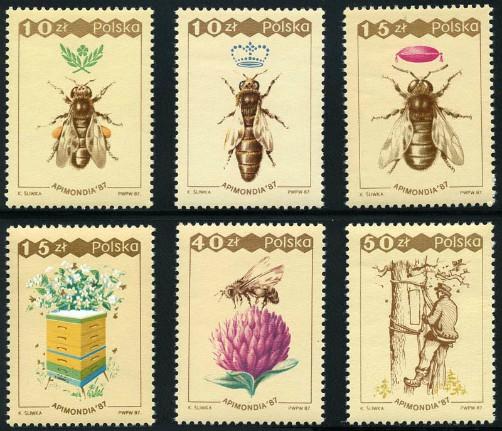 poland_16_bees
